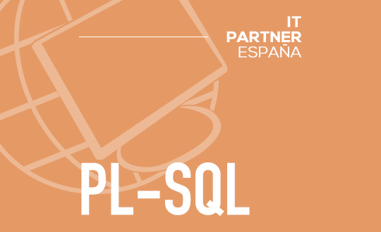 Programador PL-SQL (H/M)-Madrid