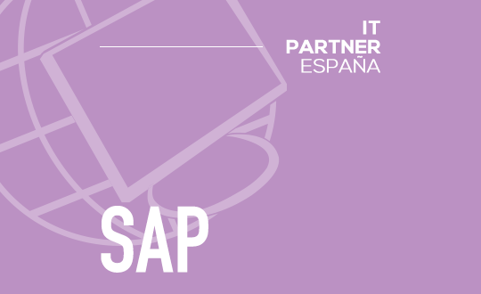 Consultor SAP Senior (H/M) – Madrid
