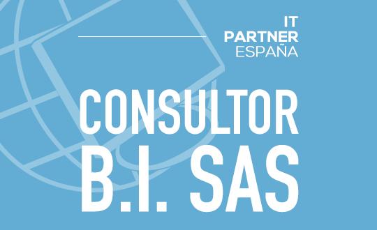 Consultor/a SAS – Madrid